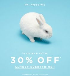 LOFT Easter email. SL: Any bunny want 30% off?
