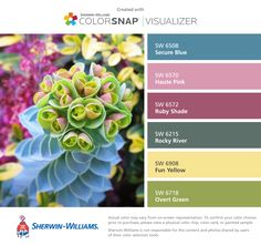 I found these colors with ColorSnap® Visualizer for iPhone by Sherwin-Williams: Secure Blue (SW 6508), Haute Pink (SW 6570), Ruby Shade (SW 6572), Rocky River (SW 6215), Fun Yellow (SW 6908), Overt Green (SW 6718).