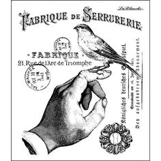 A Bird in the Hand Black And White Birds, Black White Art, Decoupage, French Typography, Victorian Illustration, Affinity Designer, Stamp Printing, Comic Panels, Collage