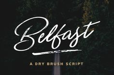 Belfast - A Dry Brush Script by Hustle Supply Co. on @creativemarket