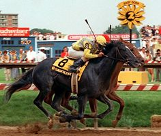 Rivals since birth: Sunday Silence and Easy Goer (inside) were born 4 days and less than 2 miles apart. On the track, they were even closer.