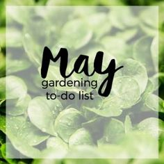 May Gardening To-Do List