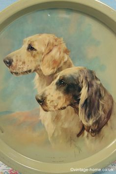 Vintage Home - Vintage Tray with Beautiful Dogs: www.vintage-home.co.uk