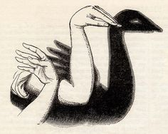 The Swan's Head Hand-Shadow (Frank Leslie's Popular Monthly, February 1881)