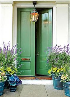 Is the best feng shui color for your front door green? Is it brown? Find out by exploring our front door feng shui colors photo gallery. Exterior Doors, Feng Shui Front Door, Beautiful Front Doors, Painted Front Doors, Front Porch Plants, Doors Interior, Porch Design, House Front