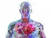 La via dell'intelligenza corporea http://www.runlovers.it/2015/la-via-dellintelligenza-corporea/ #running #cooaching #motivazione #intelligenza #corpo #mente