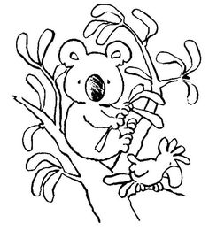 Koala Bear With Bird Coloring Page