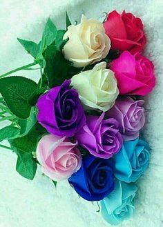 Belas rosas - My site Beautiful Rose Flowers, Beautiful Flowers Wallpapers, Love Rose, Flowers Nature, Exotic Flowers, Amazing Flowers, Pretty Flowers, Good Morning Beautiful Flowers, Good Morning Roses