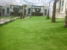 Modelo Bahamas en residencial. Un césped barato y económico para cubrir grandes superficies en jardines y patios tanto particulares como privados.