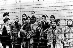 Horrors of war ... Auschwitz prisoners