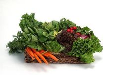 A Diet for Blood Platelets