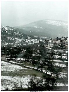Nieve y niebla en la sierra madrileña.