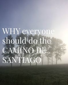 Are you thinking about doing the Camino de Santiago? Has it been on your bucket list for years. but you're still in two minds. Read this article - it will make your decision for you