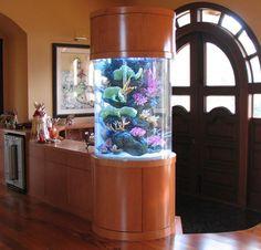 Fish Aquarium entry....Love this tank...especially salt water...georgeous :)