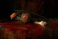 'Natures Peintures' by Akatre studio