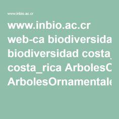 www.inbio.ac.cr web-ca biodiversidad costa_rica ArbolesOrnamentalesVC-b.pdf