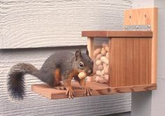 Squirrel Feeder Snack Shack, Reclaimed Wood