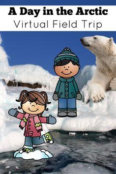 Arctic North Pole Virtual Field Trip - Polar Animals