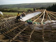 Reciprocal roof with purlins partially done... I want to do this type of roof on one of our pods   http://www.lammas.org.uk/lowimpact/images/purlinsmed_000.JPG