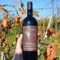 Der Rùbeo ist ein Wein der enorme Dichte mit einer großen Komplexität kombiniert. Die Cuvée aus Cabernet Franc, Cabernet Sauvignon, Merlot, Corvina, Rondinella und Molinara bietet eine perfekte Kombination von Rosinen- und Dörrpflaumenaromen und Zedernholz- und Tabaknoten. Hinzu kommt ein reichhaltiges Mundgefühl, das aber nicht fett wirkt, und ein sehr langes Finish.  95/100 Punkte KB