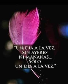 Image may contain: text History Instagram, Instagram Posts, White Flower Arrangements, Quotes En Espanol, Inspirational Phrases, Try To Remember, Best Vibrators, Spanish Quotes, Wise Quotes