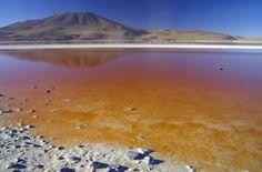 Laguna Colorada, entourée de volcans dans la réserve nationale de faune andine Eduardo Avaroa, Bolivie