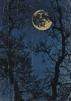 and so the night began. the moon, our voyeur. #poem