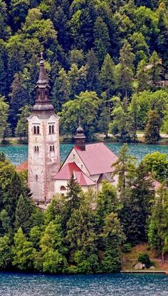 Slovenia - Lake Bled - Church on the Lake (by Darrell Godliman) Places Around The World, The Places Youll Go, Travel Around The World, Places To See, Around The Worlds, Wonderful Places, Great Places, Beautiful Places, Amazing Places