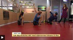Dynamisk stretchning med Dflex på TV4 Nyhetsmorgon « Dflex your body
