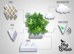 plug and plant - Hledat Googlem