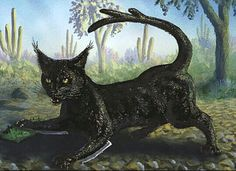 The cactus cat is a mythical fearsome critter of the American Southwest. The cactus cat was generally described being a bobcat-like creature, covered in hair-like thorns, with particularly long spines extending from the legs and its armored, branching tail. The creature was said to use its spines to slash cacti at night, allowing juice to run from the plants. On later nights, the creature was said to return to drink the now fermented juice. The then-drunken creature was said to shriek…