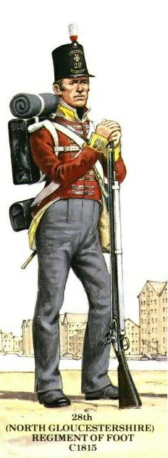 28th Regiment of Foot (North Gloucestershire) 1815.Although the Belgic shako ha become general issue, The Glosters were still wearing the Stovepipe shako in 1815.