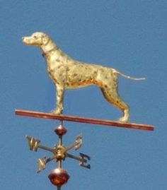 Dalmatian, Standing Dog Weathervane by West Coast Weather Vanes.  Customers can provide photographs of their special canine pets for a customized  weather vane depicting  their favorite dog.  Optional, gold leafing accentuated the distinctive markings of this dog.