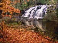 Google Image Result for http://www.lookpictures.net/photos/registered_photos/5827-bond-falls-in-autumn-michigan-wallpapers.jpg