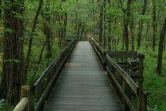 Radnor Lake State Park in Nashville, Tennessee