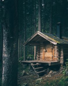 Forest Cabin, Forest House, Tiny House Cabin, Log Cabin Homes, Log Cabins, Mountain Cabins, Cabin In The Woods, Little Cabin, Cabins And Cottages