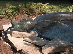 Algreen Pond Fish Spitter with Pump and Tubing Algreen https://www.amazon.com/dp/B0044O74XO/ref=cm_sw_r_pi_dp_Sguzxb1AVZF0Q
