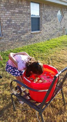 Bobbing for apples Pumpkin Patch Birthday, Bobbing For Apples, Wheelbarrow, Garden Tools, Baby Strollers, Fun, Baby Prams, Yard Tools, Prams