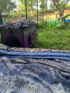 Picnic Blanket, Outdoor Blanket, Outdoor Cat Enclosure, Outdoor Cats, Picnic Quilt