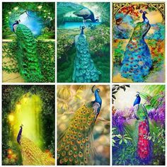 5D DIY Diamond Painting Animal Diamond Mosaic Cross Stitch Full Square – Ezbuypay Peacock Pictures, Mosaic Crosses, Peacock Art, Diamond Paint, Good Morning Wishes, Animal Paintings, Things To Buy, Cross Stitch, Embroidery
