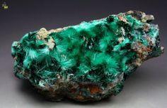 Spangolite and Brochantite