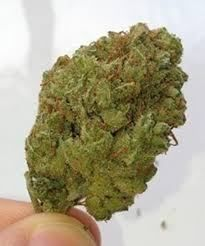 Weed for sale ; Real Marijuana offers best quality Marijuana in USA and Europe. Online buy legal marijuana at very affordable rates in USA and Europe. Buy Cannabis Online, Buy Weed Online, Medical Cannabis, Cannabis Oil, Weed Shop, Amnesia, Herbs, Stuff To Buy, Usa