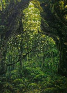 """""""The forest is a peculiar organism of unlimited kindness and benevolence.....it affords protection to all beings..."""" ~Gautama Buddha"""