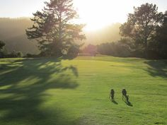 Crystal Springs Golf Course is located on a 32,000 acre nature preserve in Northern #California // Pipeline Marketing