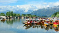 Dal Lake, Srinagar, India