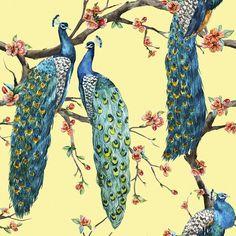 Victorian Peacock – Yellow | Removable Wallpaper | WallsNeedLove