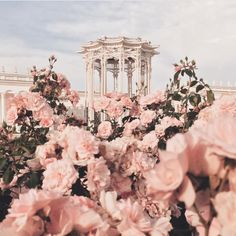 "Find and save images from the ""myth:Afrodita//Greek Gods Aes"" collection by Chase (Lenannie) on We Heart It, your everyday app to get lost in what you love. Spring Aesthetic, Flower Aesthetic, Aesthetic Fashion, Aesthetic Pastel Pink, Rose Gold Aesthetic, Aphrodite Aesthetic, Princess Aesthetic, Queen Aesthetic, Crown Aesthetic"