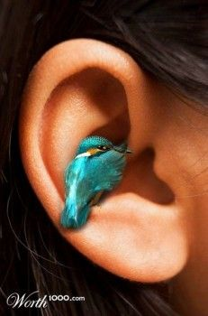Idioms humor, A little bird told me..hummingbird