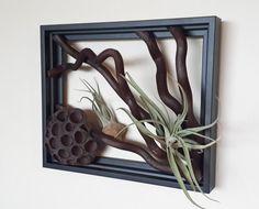 8 x 10 rama arte. Vivir pared ramas de Morus