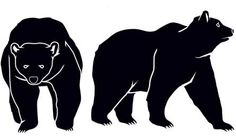 Grizzly Bear Survival: Know their behavior.  Must Know information if you are out in the wild.